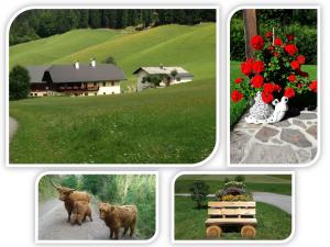 Ferienhaus – Familie Kolbitsch