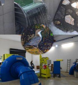Eröffnung Kleinwasserkraftwerk Gassen